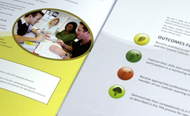 New Teacher Induction Program - Trifold Graphic Design